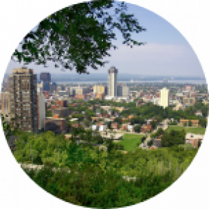 Trees and greenery at the forefront, with Hamilton city (Canada) in the background.