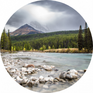 River with mountain in the background and greenery in Alberta, Canada.